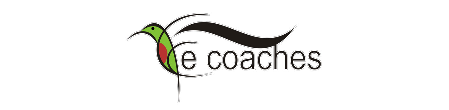 e-coaches banner for we are white river